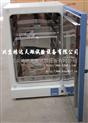 立式干燥箱|立式鼓风干燥箱