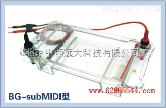中西(LQS)多用途水平电泳仪 库号:M188197