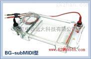 中西(LQS)多用途水平電泳儀 庫號:M188197