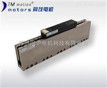 无铁芯微型直线电机