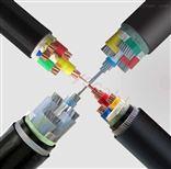 ZA-YJV32-3*10+PE1*10安徽天康铠装阻燃电缆