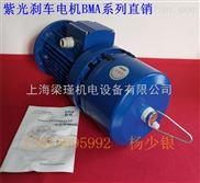 BMA8024-紫光调速电机,变频三相异步电动机