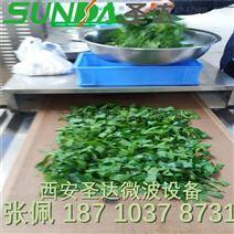茶叶干燥机 微波桑叶杀青干燥设备