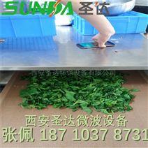 微波桑叶干燥机 茶叶杀青设备 微波干燥设备