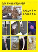大小鼠尾部自動標號儀 動物行為學