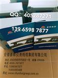 仪CZJ-B3-A02-B01-C01,CZJ-B4G-A02-B01-C01