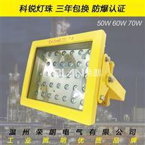 EBF602优质40WLED防爆平台灯