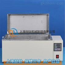 CF-B恒温水浴槽精密仪器