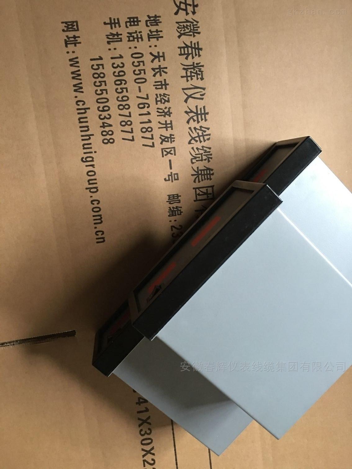 温度测量监控仪TWJ-112E