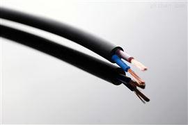 RVV(1G)手柄线行车电缆