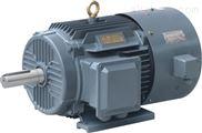 YVF系列变频调速三相异步电动机