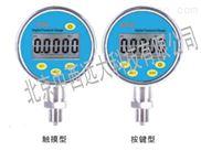 数字精密压力表型号:CW06/CWY100