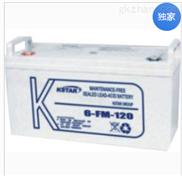 科士达蓄电池6-FM-120