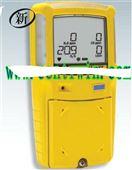 BNX3-0W00-1泵吸式复合气体检测仪