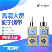 泵吸式甲烷浓度检测仪