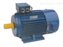 YVF2(355~450)低压大功率变频调速电机