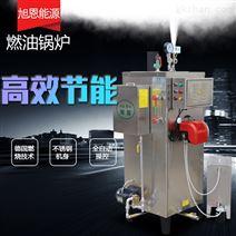 旭恩30kg燃油食品加工蒸汽发生器锅炉