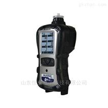 华瑞 PGM-6248泵吸式有毒射线检测仪