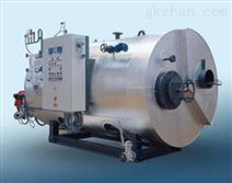 沃森燃油蒸汽锅炉