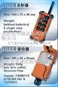 台湾禹鼎F21-E1B工业无线遥控器(全系列)