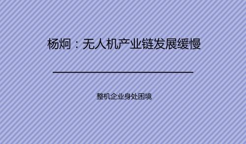 杨炯:无人机产业链发展缓慢 整机企业身处困境