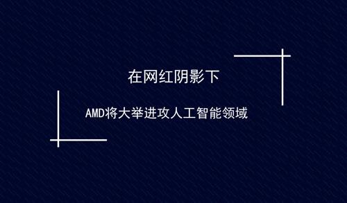 在网红阴影下 AMD将大举进攻人工智能领域