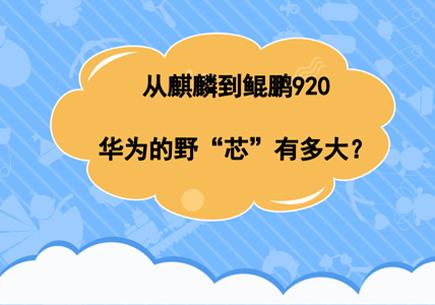 """从麒麟到鲲鹏920,华为的野""""芯""""有多大?"""