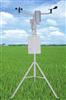ST-TXQY宁夏田间小气候自动观测仪