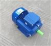 MS6322中研紫光三相异步电机-紫光电机